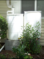 Rain Barrel Install, Front Yard, Salem, Oregon