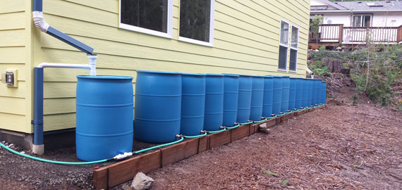 Rain Barrel Water Harvesting Eugene Oregon